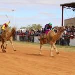 Boulia Camel Races. Image Jan Norton (2)