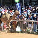 Chontelle Jannese 2nd place in Camel Cup Final 2017